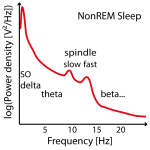 NonREM-power-spectral-density-example-01